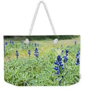 Lilac Flower In Green Canvas Spring Has Arrived 1 Weekender Tote Bag