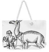 Llama, 1607 Weekender Tote Bag