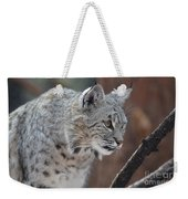 Lynx In A Crouch Ready To Pounce Weekender Tote Bag