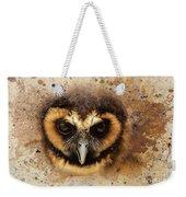 Malaysian Brown Wood Owl Weekender Tote Bag