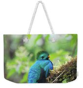 Male Quetzal Weekender Tote Bag