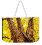 Maple Tree Portrait 2 Weekender Tote Bag
