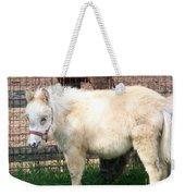 Miniature Horse Weekender Tote Bag