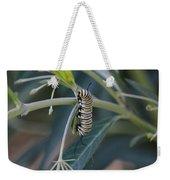 Monarch Catterpillar  Weekender Tote Bag