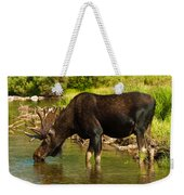 Moose Weekender Tote Bag by Sebastian Musial