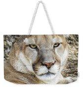 Mountain Lion Weekender Tote Bag