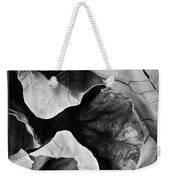 Mounts Botanical Garden 2363 Weekender Tote Bag