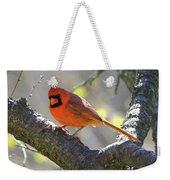 Mr Northern Cardinal Weekender Tote Bag