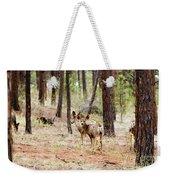 Mule Deer In The Pike National Forest Weekender Tote Bag