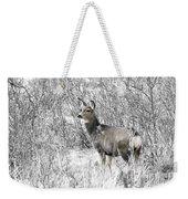 Mule Deer In Winter In The Pike National Forest Weekender Tote Bag