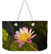 Natures Brilliance Weekender Tote Bag
