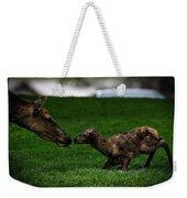 Newborn Elk Weekender Tote Bag