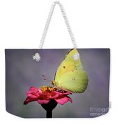 Orange Sulphur Butterfly Portrait Weekender Tote Bag