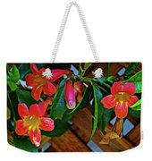 Orange Trumpet Vine At Pilgrim Place In Claremont-california   Weekender Tote Bag
