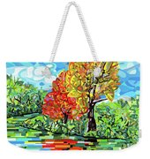 Reflection In The Wash  Weekender Tote Bag