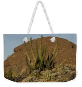 Organ Pipe Cactus Weekender Tote Bag
