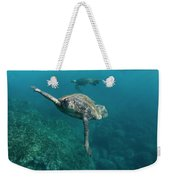 Pacific Green Sea Turtle Chelonia Mydas Weekender Tote Bag