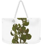 Pacific Mistletoe Weekender Tote Bag