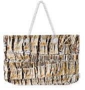 Palm Trunk Weekender Tote Bag