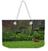 Pasture Napping Weekender Tote Bag