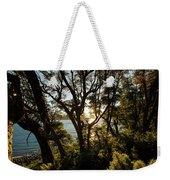 Patagonia Landscape Weekender Tote Bag