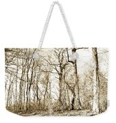 Path In A Forest Weekender Tote Bag