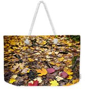 Path In Fall Forest Weekender Tote Bag by Elena Elisseeva