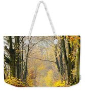 Path Of Red Leaves Towards Light In Fall Forest Weekender Tote Bag