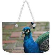 Peacock 2 Weekender Tote Bag