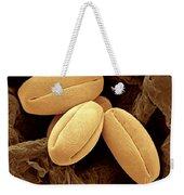 Pear Pollen Grains, Sem Weekender Tote Bag