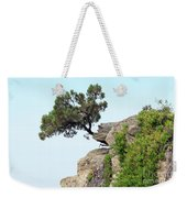 Pine Tree On A Rock Weekender Tote Bag