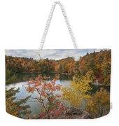 Pink Lake Weekender Tote Bag