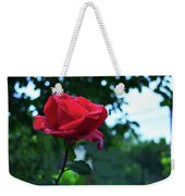 Pink Rose With Dew Drops Weekender Tote Bag