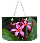 Plumeria Flowers 4 Weekender Tote Bag