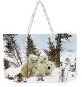 Polar Bear Ursus Maritimus Trio Weekender Tote Bag