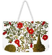 Pomegranate, 1613 Weekender Tote Bag