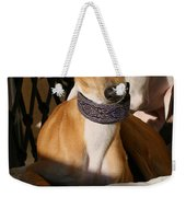 Portrait Of An Italian Greyhound Weekender Tote Bag