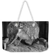 Portrait Of An Italian Greyhound In Black And White Weekender Tote Bag