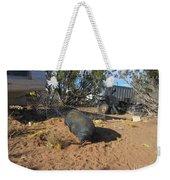 Pot-bellied Pig Weekender Tote Bag