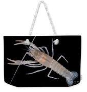 Prickly Cave Crayfish Weekender Tote Bag