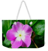 Purple Periwinkle Flower 1 Weekender Tote Bag