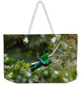 Quetzal In Costa Rica Weekender Tote Bag