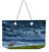 Rain Storm Ewe And Lamb Weekender Tote Bag