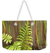 Rainbow Eucalyptus And Fern Weekender Tote Bag