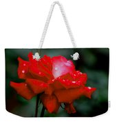 Rained Upon Weekender Tote Bag