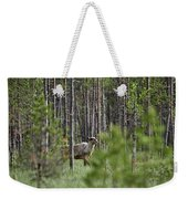 Rare And Wild. Finnish Forest Reindeer Weekender Tote Bag