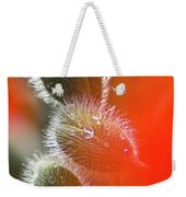 Red Corn Poppy Bud And Red Dots Weekender Tote Bag