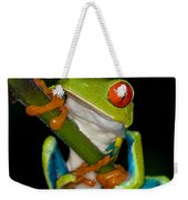 Red-eyed Green Tree Frog Hanging On Weekender Tote Bag