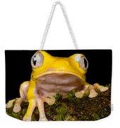 Red-eyed Treefrog, Xanthic Form Weekender Tote Bag