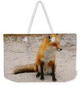 Red Fox 3 Weekender Tote Bag